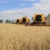 Що таке зона ризикованого землеробства