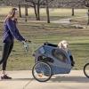 Чудо-пристосування для собак, які полегшують життя