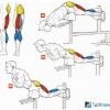 Гіперекстензія у важкій атлетиці