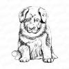 Як намалювати собаку самостійно