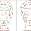 Як підтягнути шкіру обличчя в домашніх умовах: 4 кращих способу