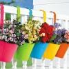 Які квіти можна виростити на балконі?