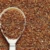 Калорійність гречаної каші і корисні властивості гречки для нашого здоров`я