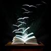 Книги, які варто прочитати всім