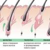 Лікування випадіння волосся - ефективні сучасні методики і народні рецепти