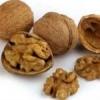 Лісовий і волоський горіхи: корисні властивості