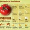 Чи можна їсти помідори при панкреатиті?