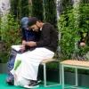 Мусульманські закони: зрада дружини в ісламі