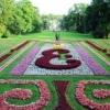 Особливості створення регулярного саду на дачній ділянці