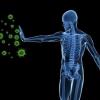 Підвищуємо імунітет народними засобами