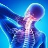 Вправи з палицею для лікування і зміцнення спини