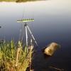 Риболовля на коропа