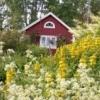Сад в шведському стилі