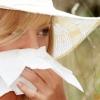 Зроблена нова спроба пояснити появу алергії на піт