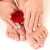Симптоми, лікування, профілактика грибка нігтів