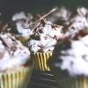 Вершкове тістечко з шоколадом - рецепт