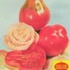 Сорт томата: кримська троянда