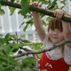 Чим зайнятися на дачі з дітьми