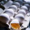 Скільки зберігаються курячі яйця в холодильнику