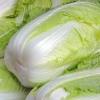 Вирощування пекінської капусти