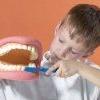 Здорові зуби повинні бути у мами і тата